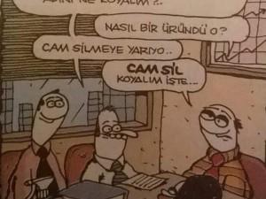 Camsil